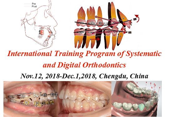International training program of systematic and digital orthodontics